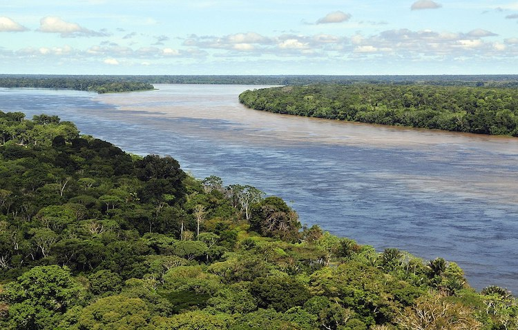 Photo: Aerial view of the Amazon rainforest, near Manaus. CC BY-SA 2.0