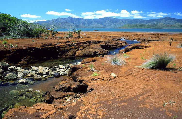 Photo: A creek in southern New Caledonia. Red colours reveal the richness of the ground in iron oxides and nickel.) CC BY 2.5