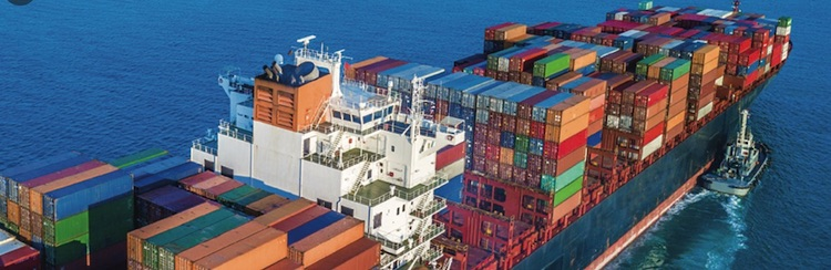 Photo: Container line shipping has been hard hit by COVID-19. Source: The European Shippers' Council (ESC).