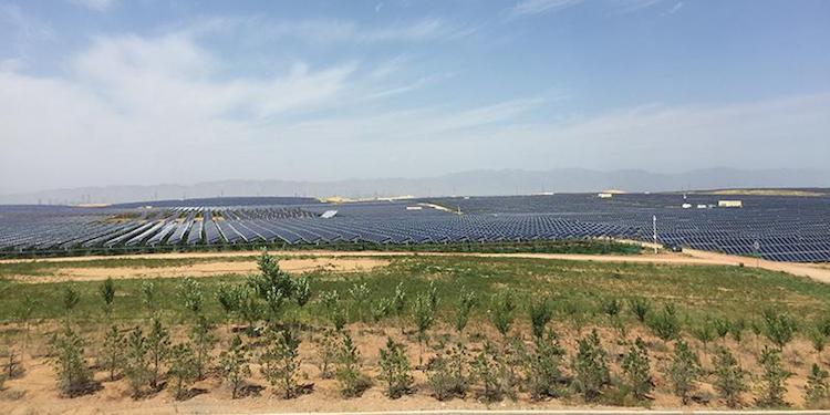 Photo: Begun 30 years ago, the Kubuqi desert greening project has succeeded in not only reining in the relentless growth of the seventh-largest desert in China, roughly the size of Kuwait, it has also turned about 6,000 square kilometers of the desert-one-third of it-green. Source: UNCCD