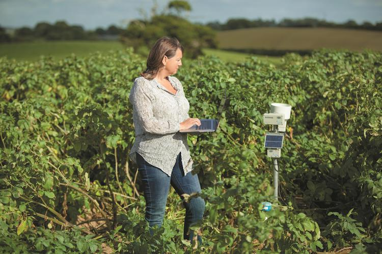 Photo: PepsiCo Sustainable Agriculture's Water Project uses technology and agricultural skills to reduce global water use. Credit: PepsiCo